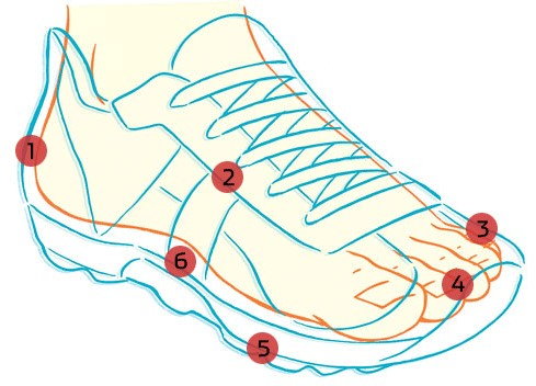 Beginning Runner, How to Buy the Right RunningShoes
