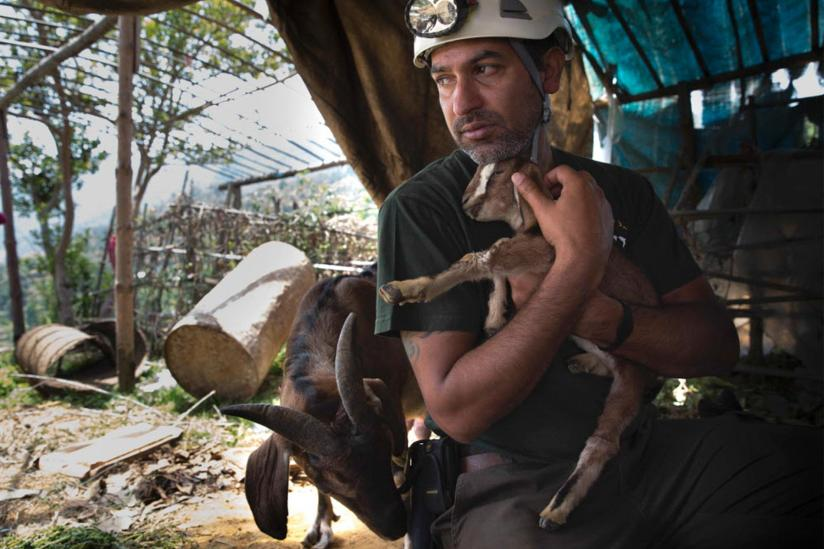 Animal Survivors Rescued in Nepal